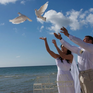 Releasing White Doves