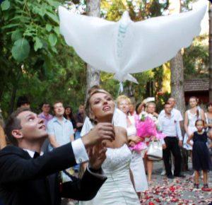 White Dove Ballons