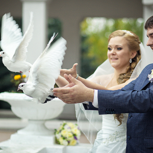 Married Couple Release White Dove